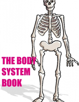 Body system book