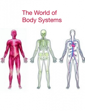 Body Systems Book