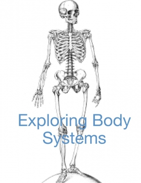 Exploring Body Systems