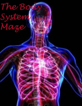 The Body system Maze