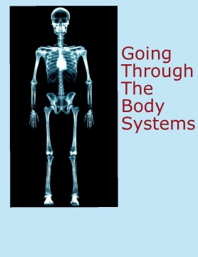Journey through Body Systems