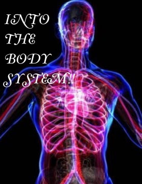 Into the body system!!