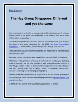 The Hay Group Singapore   Different and