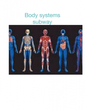 Body system subway