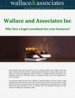 Wallace and Associates Inc