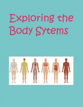 Exploring the Body System