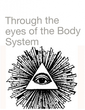The eyes of the body system