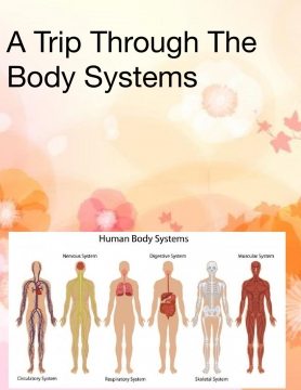 A trip to the body Systems