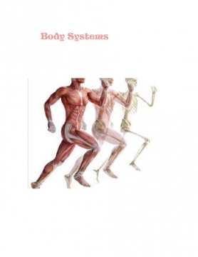 Body Systems!