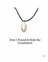 How I Found & Stole the Consitution