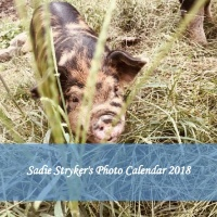 Sadie Stryker's Photo Calendar 2018
