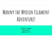 Manny the Myosin Filament Adventure!