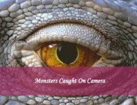 Monsters Caught On Camera