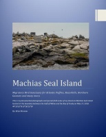 My time on Machias Seal Island