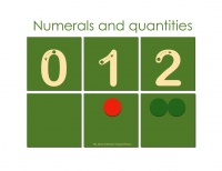 Numerals and Quantities - the Book