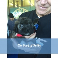The Book of Bubby