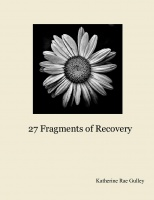 27 Fragments of Recovery