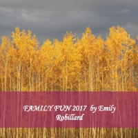 FAMILY FUN 2017  by Emily Robillard