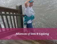 Adventures of Dora B Exploring