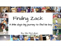 Finding Zack; A little dog's big journey to find his boy