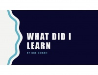What Did I Learn | Learning Through Technology