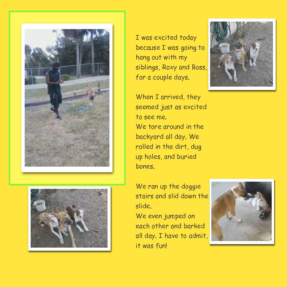 pitbull tales who let the dogs out cover page book 137777